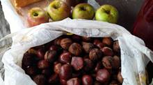 We have been picking and binging on grapes, apples, pears, figs, walnuts and chestnuts along the way‎. (Prostate Cancer Canada)