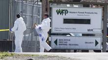 RCMP investigators on the scene of a shooting at the Western Forest Products mill in Nanaimo, B.C. on April 30, 2014. (John Lehmann/The Globe and Mail)