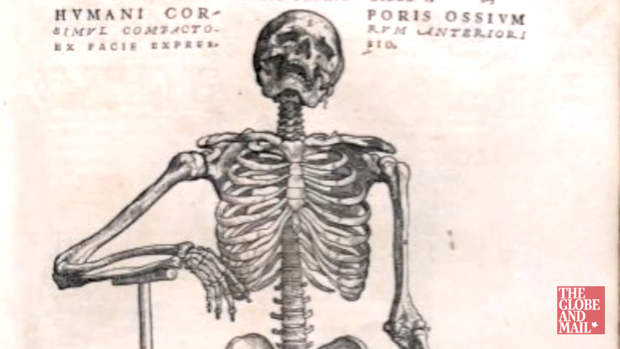Video U Of T Acquires Rare Copy Of 16th Century Anatomy Book The