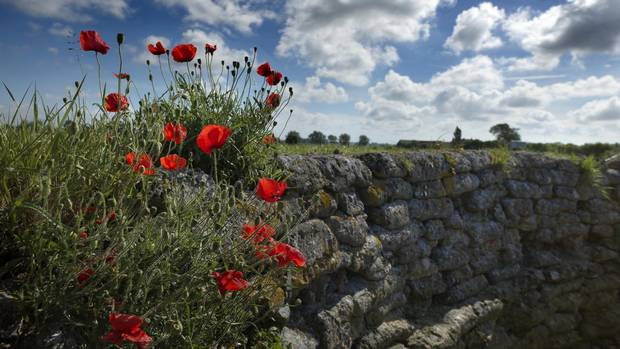 Haunting and uplifting: a visit to Flanders Fields - The Globe and ...