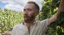 Vincent van Gogh lookalike Daniel Baker in the Pinot Noir vineyard at Martin's Lane Winery in the Okanagan Valley, British Columbia. (Hand-out/VMF Estates)