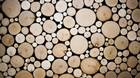 A close up of Brent Comber's Alder Disk at his studio in North Vancouver, British Columbia, Saturday, October 5, 2013. Rafal Gerszak for The Globe and Mail