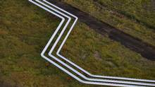 Flow lines cut across a field at Nexen Energy ULC's Long Lake oil sands processing facility, east of Fort McMurray, Alta. (Dave Olecko)