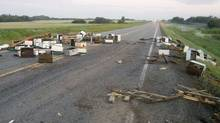 Traffic was being detoured and RCMP officers were abuzz after a trucking carrying honey bees was involved in a collision on an Alberta highway, pictured on Thursday Aug. 4, 2011 (THE CANADIAN PRESS/RCMP/THE CANADIAN PRESS/RCMP)