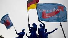 Supporters of the Euroskeptic Alternative for Germany (AfD) party wear morph suits and wave flags during an event to rally support for Sunday's European Parliament elections at the Brandenburg Gate in Berlin May 23, 2014. (Thomas Peter/Reuters)