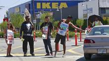 Striking Ikea workers picket outside the Richmond Ikea store in Richmond, B.C. July 18, 2013. (Jeff Vinnick For The Globe and Mail)