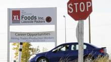 Alberta's XL Foods has been shut down indefinitely amid an E. coli outbreak that has sickened several people in the province. A food safety legislation is to be amended this week to ensure government commitment despite budget cuts. (Larry MacDougal/The Globe and Mail)