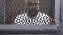 Al Jazeera journalist Mohamed Fahmy, a Canadian-Egyptian national, stands in a metal cage during his trial in a court in Cairo March 24, 2014. (Reuters)