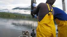 Researchers sample the deep waters of Sakinaw Lake, BC Canada on a cold January morning. (Alyse Hawley and Steven Hallam)