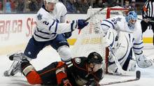 Luke Schenn of the Toronto Maple Leafs clears the puck past Saku Koivu of the Anaheim Ducks during game action at the Air Canada Centre January 20, 2011 in Toronto, Ontario, Canada. (Abelimages/Getty Images)