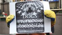 """A man holds a sign during a """"Dogs Against Romney"""" demonstration outside the 136th Westminster Kennel Club Dog Show at New York's Madison Square Garden, February 14, 2012. (Reuters/Shannon Stapleton/Reuters/Shannon Stapleton)"""