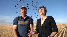 Ken and Sandra Purdy, shown at their farm near Keeler, Sask., on Sept. 14, 2011, are setting out to grow the world's next superfruit: Saskatoon Berries. (Mark Taylor for The Globe and Mail/Mark Taylor for The Globe and Mail)