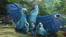 Director Carlos Saldhana and the animation team of Rio 2 created wonderful 3-D aerial scenes. (Blue Sky Studios)