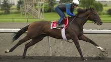 Gary Boulanger has won 18 races at Woodbine Racetrack during his comeback from a life-threatening accident in 2005. (Michael Burns/THE CANADIAN PRESS)