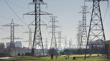 Ontario Premier Kathleen Wynne is promising lower hydro rates for the province. (Darren Calabrese/THE CANADIAN PRESS)