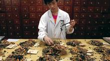A worker prepares traditional Chinese herbal medicines at Beijing's Capital Medical University Traditional Chinese Medicine Hospital May 25, 2011. The hospital distributes around 20,000 prescription doses daily, more than five tonnes of ingredients, from their stock of 600 different types of plants, herbs, and animal organs. Almost all traditional Chinese herbal medicine has been banned from sale in European Union (EU) countries since May 1, following the implementation of the Traditional Herbal Medicinal Products Directive that was originally passed in 2004. Under the guidelines, all herbal medicinal products are required to obtain a certificate before entering the EU market, and have a history of at least 30 years, including 15 years in EU regions. REUTERS/David Gray (CHINA - Tags: HEALTH SOCIETY EMPLOYMENT BUSINESS) (DAVID GRAY/REUTERS)