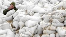 Cpl. Troy Hammell of 1PPCI Edmonton sits among a pile of sandbags as he eats his lunch during a break just outside of Popular Point, Man, Friday, May 13, 2011. (JONATHAN HAYWARD/THE CANADIAN PRESS)