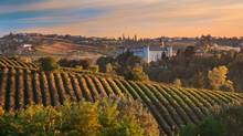 The Piedmont region of northwest Italy is home to the unassuming dolcetto grape. (Daniela Pelazza/Getty Images/iStockphoto)