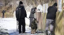 Police hunt for clues at the town houses where Kesean Williams, 9, was shot Wednesday night. (Peter Power/The Globe and Mail)