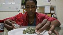 Ayrn Taylor, a United Food and Commercial Workers union (UFCW) member and employee at the Venice Beach Care Center, displays medical marijuana at the dispensary in Los Angeles, Feb. 6, 2013. (JONATHAN ALCORN/REUTERS)