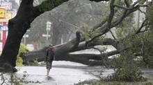 A man stands in front of an uprooted oak tree on Louisiana Avenue as Hurricane Isaac makes land fall in New Orleans, Louisiana August 29, 2012. (SEAN GARDNER/REUTERS)