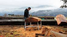 Chief Terry Horne works on the memorial pole, a red cedar, Coast-Salish style house-post showing a father and a son. (Diana Bonner Cornell/Bear Image Productions)