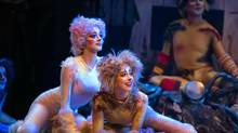 The feisty version of Cats unleashed on Tuesday isn't playing at the majestic Elgin Theatre this time, but the 700-seat Panasonic. In other words, the original mega-musical is no longer mega