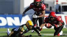 Edmonton Eskimos Ronnie Prude (L) and Calgary Stampeders Fred Bennett (R) try to retrieve the football after Stampeders Bryson Tucker (C) fumbled the football during the first half of their pre-season CFL football game in Calgary, Alberta June 15, 2012. (TODD KOROL/REUTERS)
