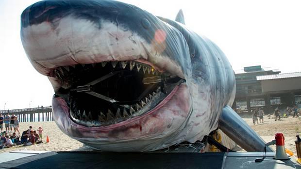 pics for gt biggest shark megalodon