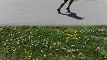 Dandelions and other weeds. (Fred Lum/The Globe and Mail/Fred Lum/The Globe and Mail)