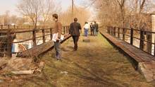 The rough charm of the West Toronto Railpath an exercise in 'resilience ecology' (Scott Torrance Landscape Architect)