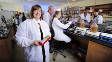Dr.Emma Allen-Vercoe and her team at the University of Guelph study human gut microbiota, the world of tiny organisms living within our intestines. (HO/THE CANADIAN PRESS)