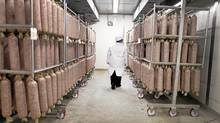 CFIA Food Processing Specialist Inspector Jennifer Hayes on on the job at a Toronto area meat processing plant Nov 16, 2010. (Moe Doiron/The Globe and Mail)