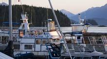 A tour boat sits idle at Jamie's Whale Watching Station in Tofino, B.C. in this file photo. The company says one of its ships has been pulled free from where it grounded late Saturday afternoon. (Kevin Light/Reuters)