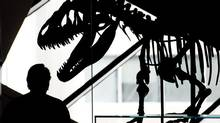 A person is silhouetted along side a prehistoric dinosaur at the Royal Ontario Museum. (Nathan Denette/THE CANADIAN PRESS)