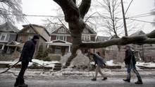 Pedestrians pass a fallen tree in Toronto on Dec. 21, 2013 after a devastating ice storm. (Deborah Baic/The Globe and Mail)
