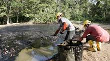 Oil workers clean up a contaminated pool in Taracoa December 10, 2007. (Guillermo Granja/REUTERS)
