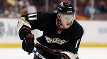 Saku Koivu of the Anaheim Ducks. (Jeff Gross/2009 Getty Images)