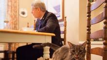 A picture of Stephen Harper from his Flickr account