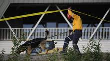 A member of Toronto's Heavy Urban Search and Rescue team walks his rescue dog outside the Aglo Centre Mall in Elliot Lake, Ont. on Tuesday. (Fred Lum/The Globe and Mail)